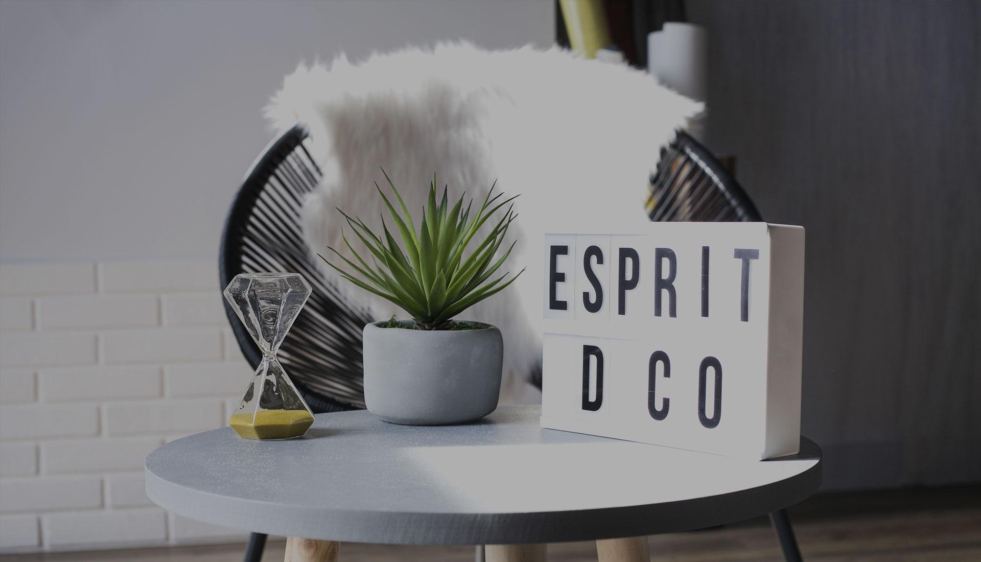 EspritD'co-Peinture-decoration-mouilleron-le-captif